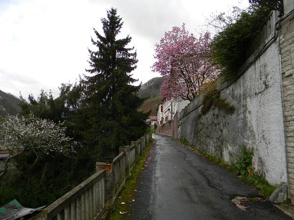 La primavera si nota solo per gli alberi in fiore. Tempo freddo, piovoso e nuvoloso.