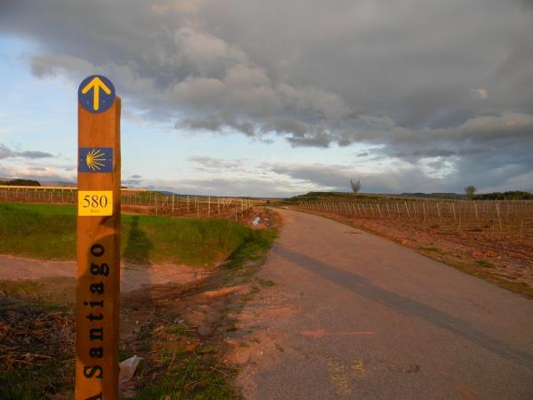 In cammino, per abbandonare La Rioja. Segnali noiosissimi ogni dannato chilometro, quasi a ricordarti quanto tu fossi ancora lontano. Demotivational level: Santiago.
