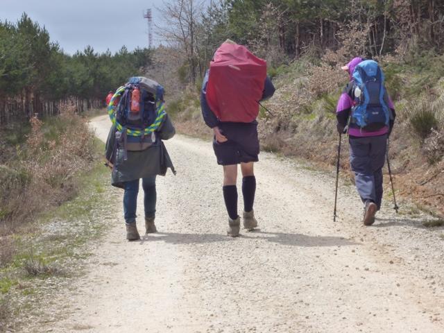 In cammino dopo pranzo, per gli ultimi 12 Km da Villafranca a S. Juan de Ortega.